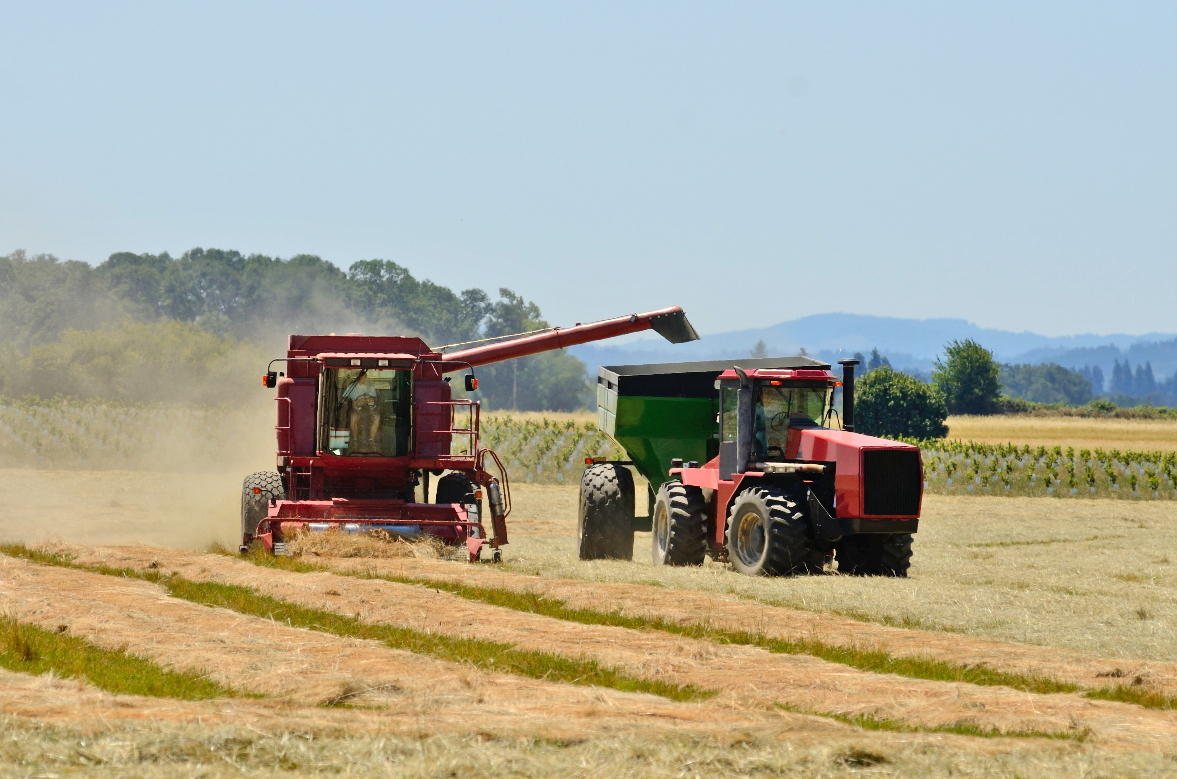 Farmland, Oregon Willamette Valley